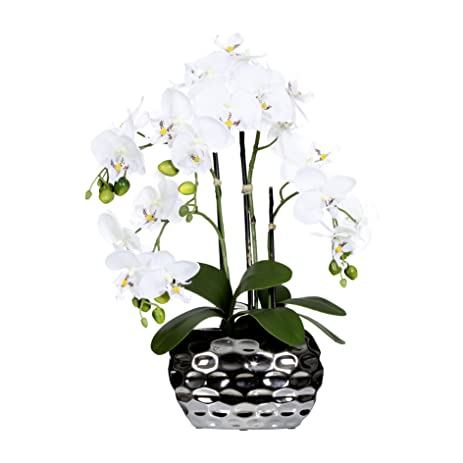 Amazon Artificial Flower Fake White Orchid Phalaenopsis