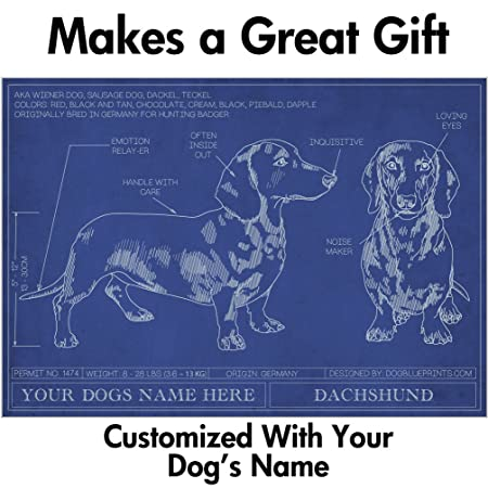 Dachshund blueprint with personalized dog name makes a great gift dachshund blueprint with personalized dog name makes a great gift unframed art poster malvernweather Image collections