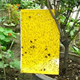 20 PCS Yellow Sticky Glue Paper Insect Trap Catcher Killer Fly Aphids Wasp AU (10 X 25 cm)