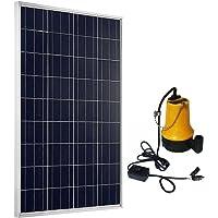ECO-WORTHY - Panel solar con bomba de agua para lavar el coche (100 vatios)