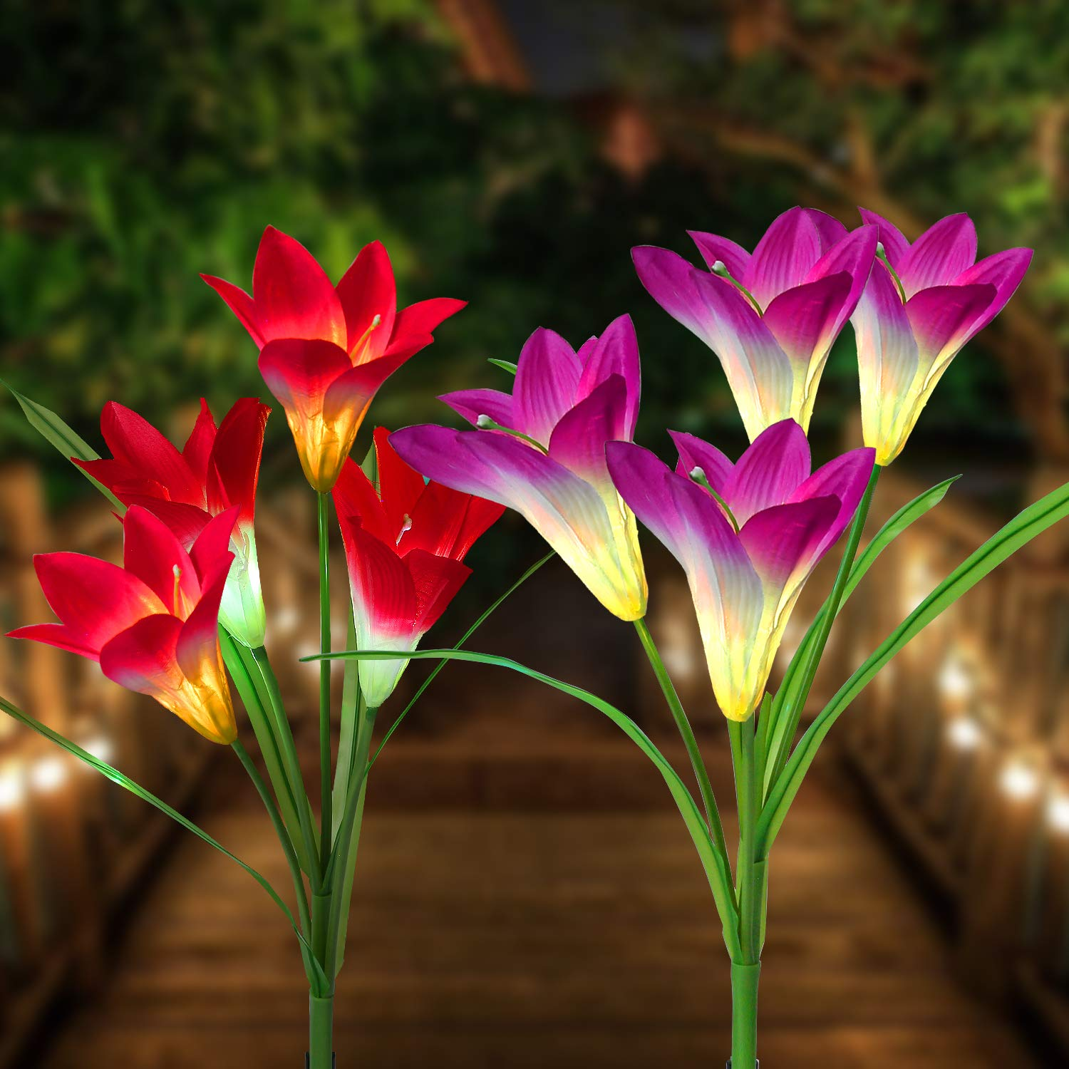 Loren Solar Lights Outdoor - New Upgraded Solar Garden Lights, Multi-Color Changing Lily Solar Flower Lights for Patio,Yard Decoration, Bigger Flower and Wider Solar Panel (2Pack)