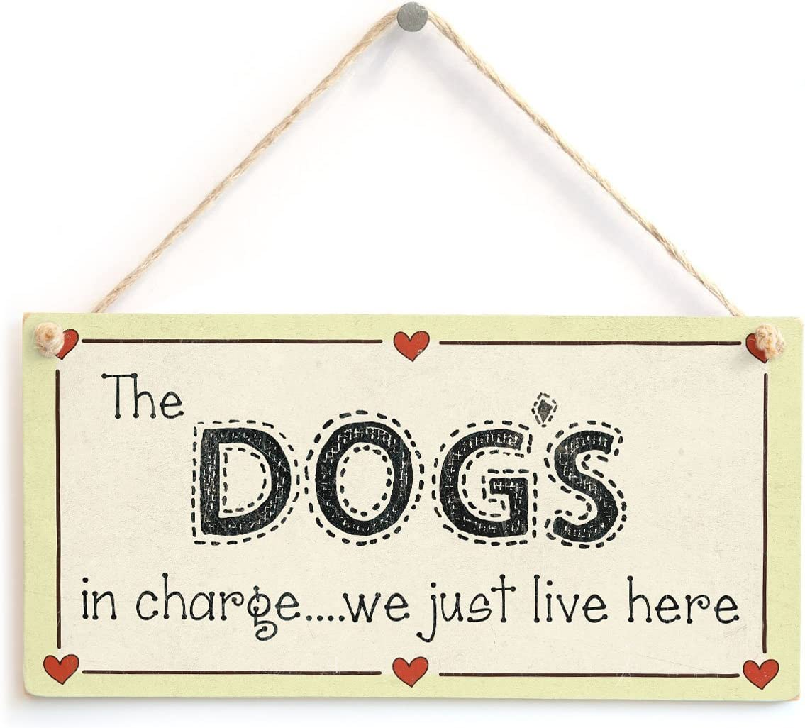 """Meijiafei The Dog's in Charge we just Live here - Crazy Dog Lover Sign 10""""x5"""""""