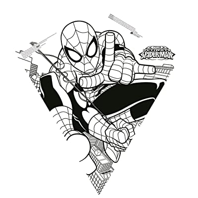 Color Me 26-inches Tyvek Diamond Kite: Spider-man: Toys & Games