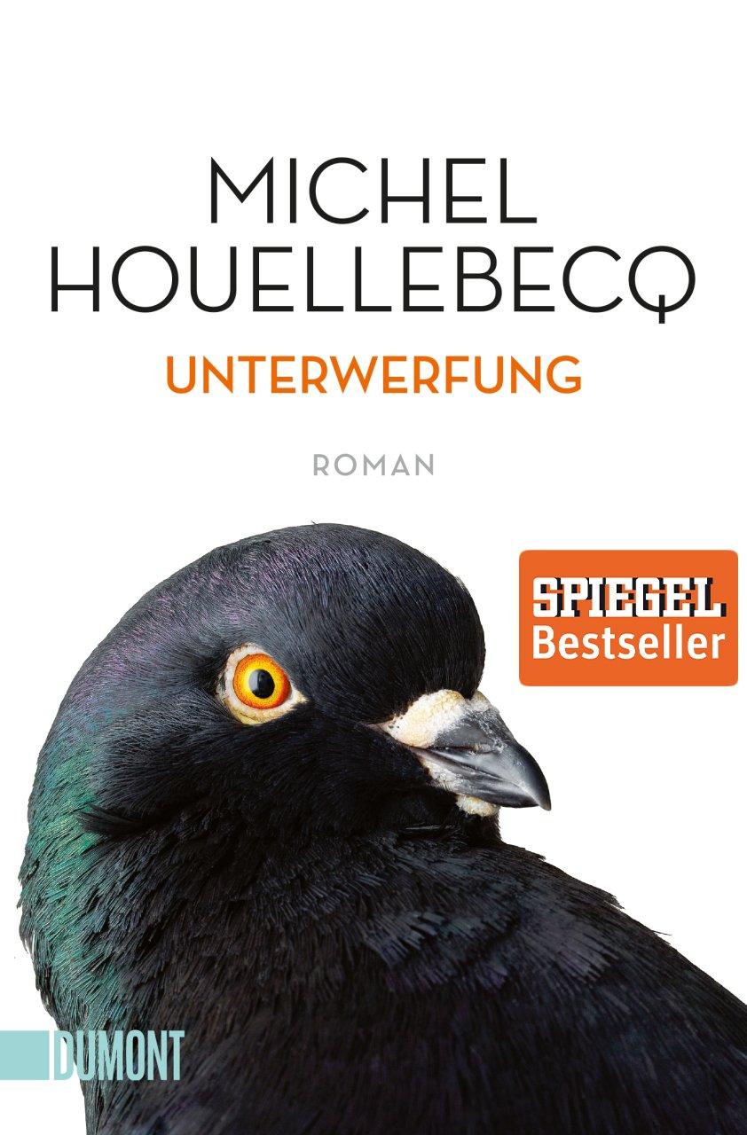Unterwerfung: Roman (Taschenbücher)