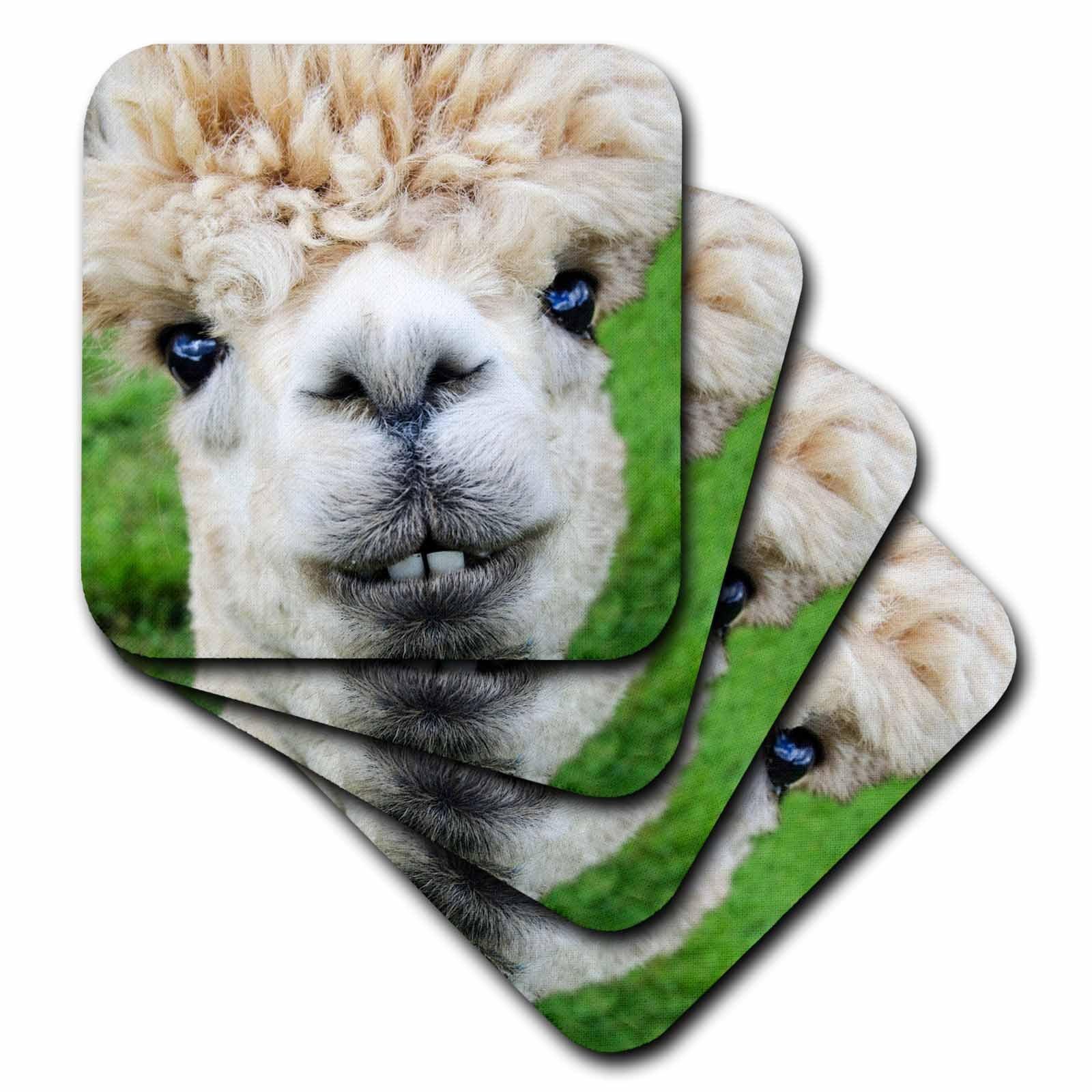 3D Rose Alpaca Lama South America White Soft Coasters, Multicolor