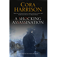Shocking Assassination, A: A Reverend Mother mystery set in 1920s' Ireland