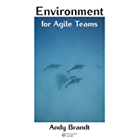 Environment for Agile Teams: How to create an environment that supports agility