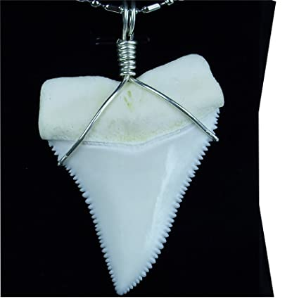 Real shark tooth necklace 22 inch great white megalodon jaws huge real shark tooth necklace 22 inch great white megalodon jaws huge silver surfer pendant aloadofball Gallery