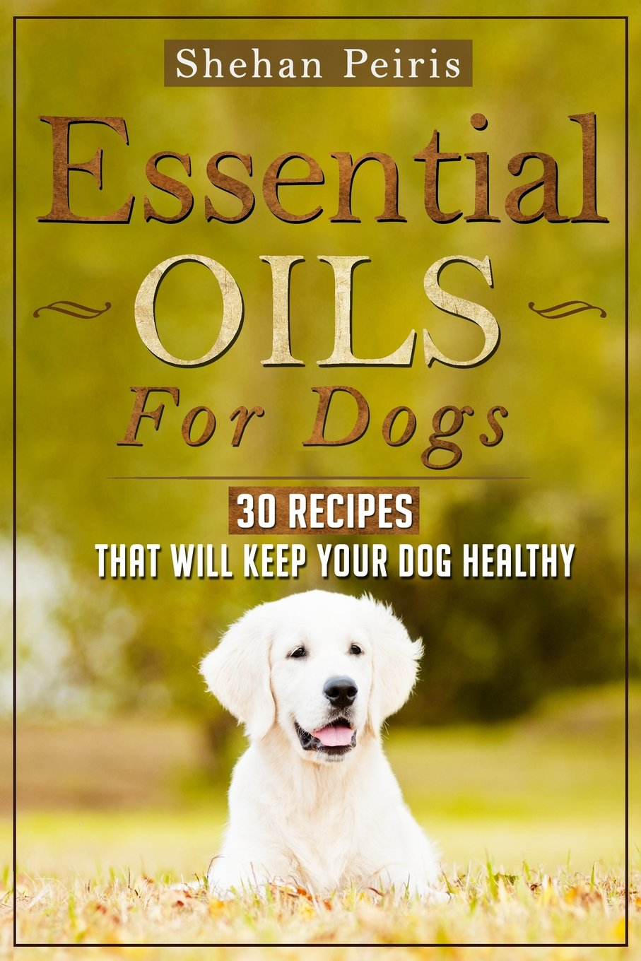 Read Online Essential Oils For Dogs: 30 Recipes That Will Keep Your Dog Healthy pdf epub
