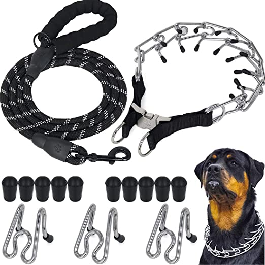 Dog Prong Collar with 5 Ft Leash,Stainless Steel Choke Pinch Dog Training Collar with Comfort Rubber Tips,for Small Medium Large Dogs
