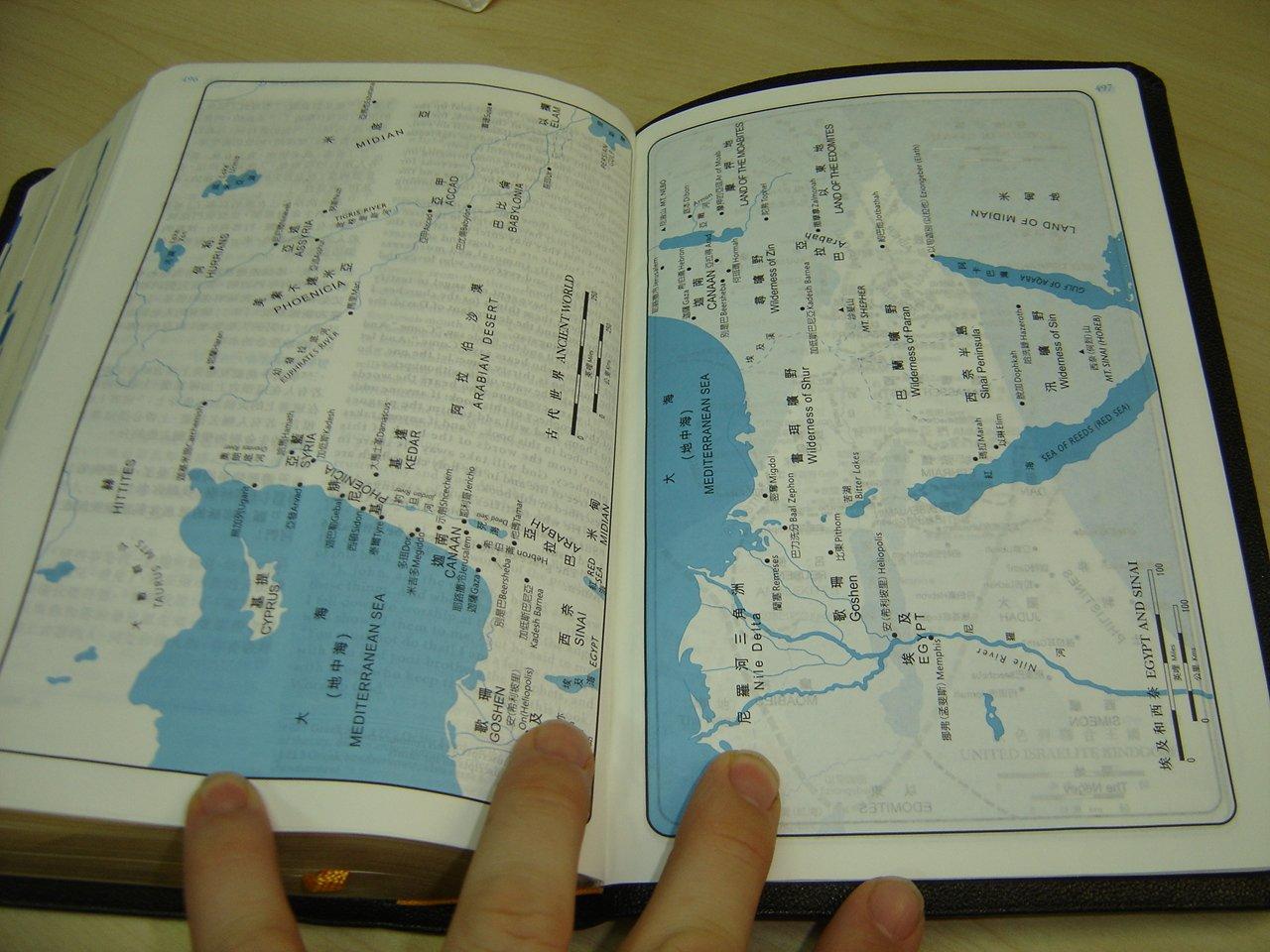 ESV-CUNP Bilingual Chinese-English Holy Bible / 中英對照聖經:新標點 ...