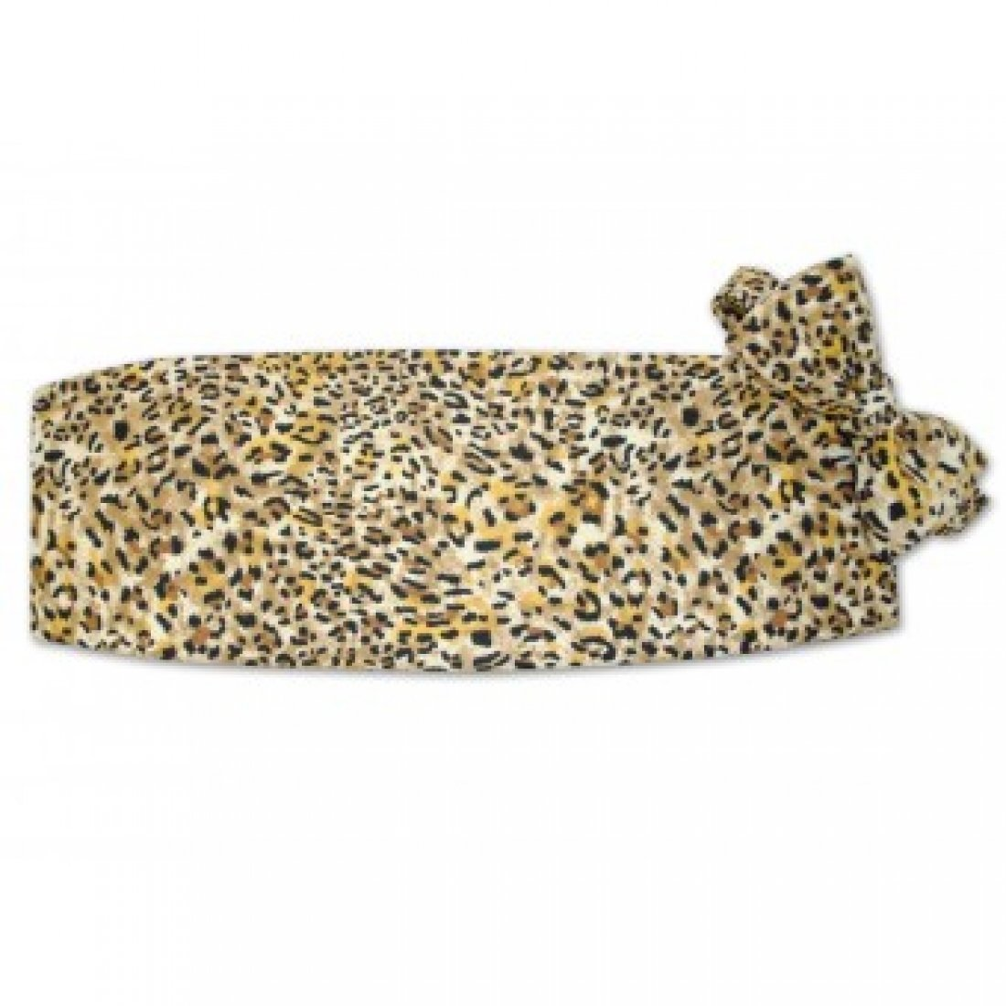 Leopard Tuxedo Cummerbund and Bow Tie by David's Formal Wear