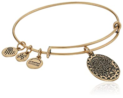 8ac59abcdcea55 Amazon.com: Alex and Ani Daughter Expandable Charm Bangle, Rafaelian Gold  Finish: Jewelry