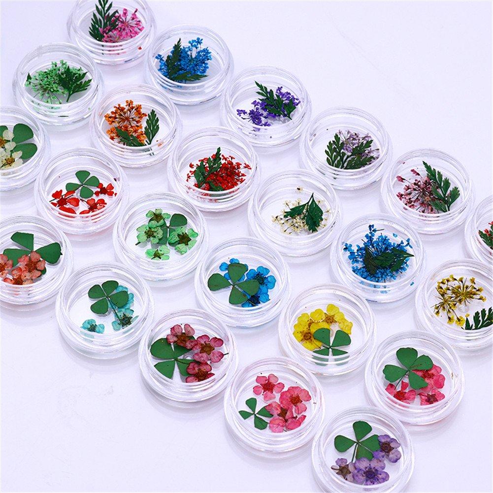 NICOLE DIARY 24 Boxen Echte Nagel getrocknete Blume Bunte Kleeblatt ...
