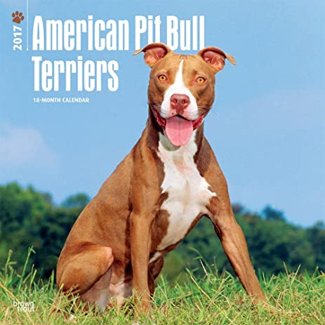 Great American Pit Bull Terriers Wall Calendar For The Year 2017 {jg} Best  Holiday