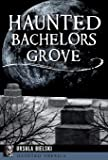 Haunted Bachelors Grove (Haunted America)