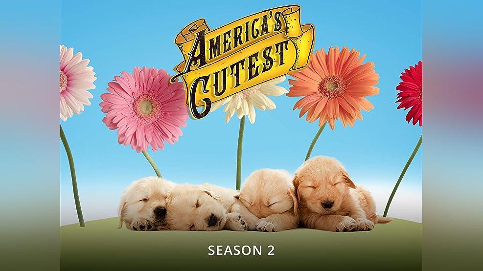 America's Cutest - Season 2