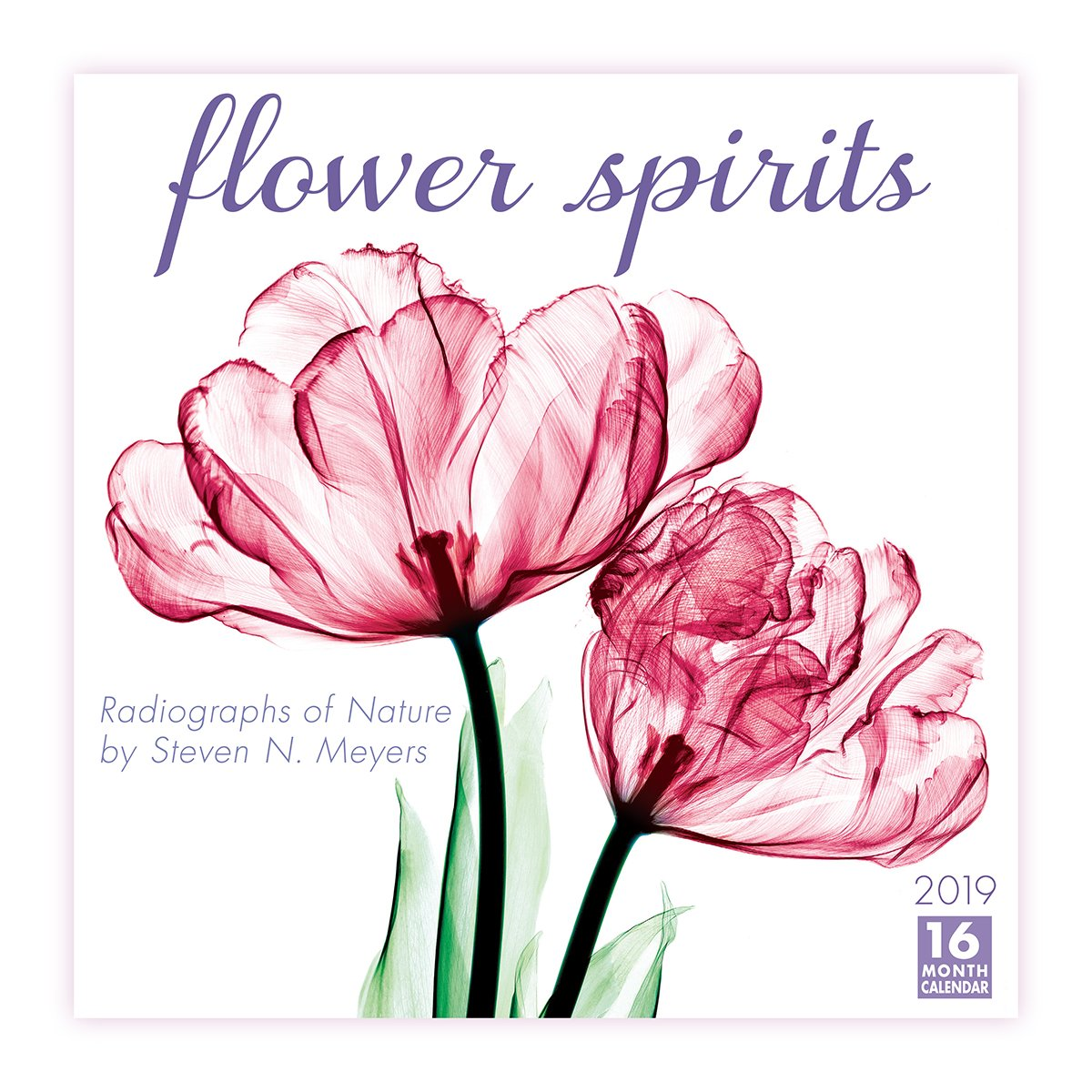 Flower Spirits 2019 Wall Calendar Sellers Publishing 0764453003888
