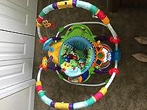 Best baby 'toy' we own!