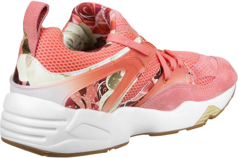 Puma Bog x Caro x Graphic W chaussures: : Sports et