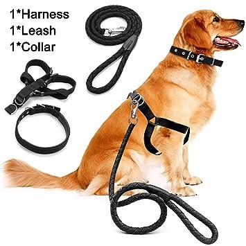 Juego de correa de arnés de perro, cuerda de tracción para mascotas MAXIN Arnés de