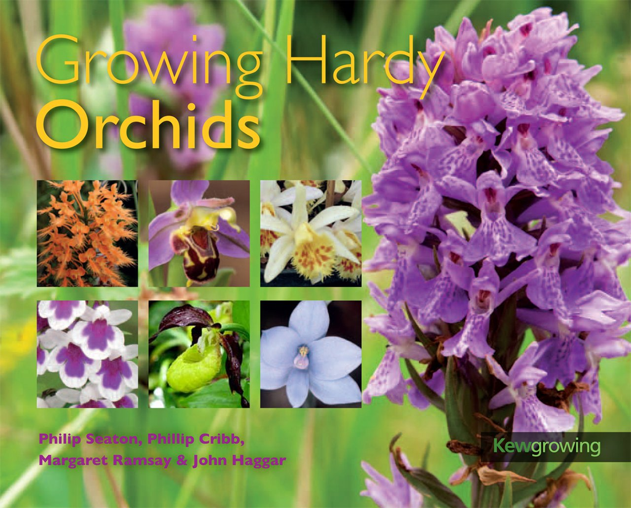 Download Growing Hardy Orchids (Kew Growing) ebook