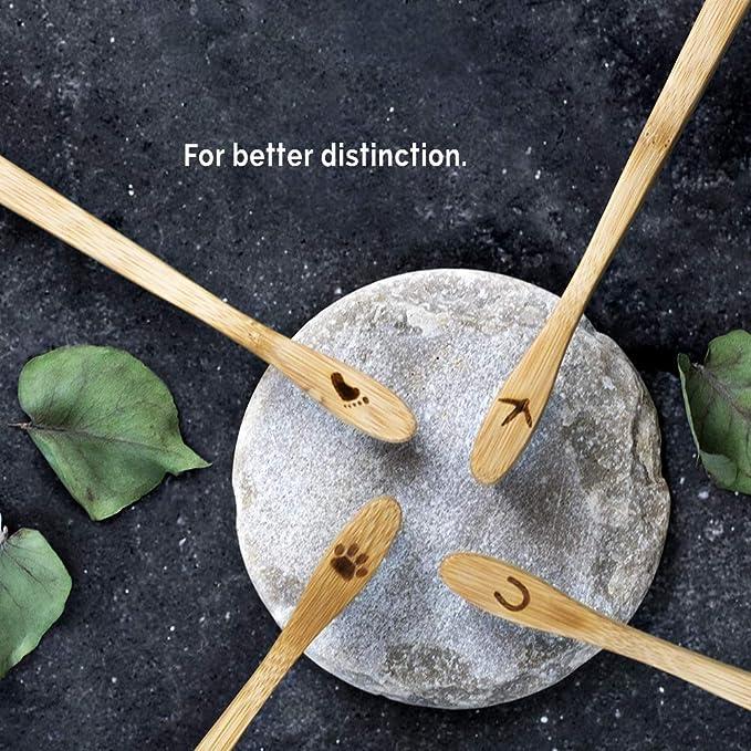 Planet Bamboo ♻ Paquete de 4 cepillos de dientes de bambú (Niños | rosa o azul | Medio), Cepillo de dientes natural (Rose): Amazon.es: Salud y cuidado ...