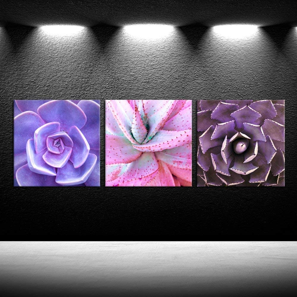 iKNOW FOTO 3 Pieces Purple Succulent Cactus Flower Canvas Prints Plants Painting Wall Decor Art Giclee Print Botanical Pictures for Home Living Room Decal Ready to Hang 12x12inchx3pcs