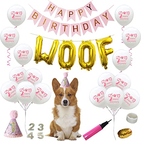 BWOGUE Dog Birthday Party Supplies Cat Hat Happy Balloons Banner WOOF Letter Ballons Pet