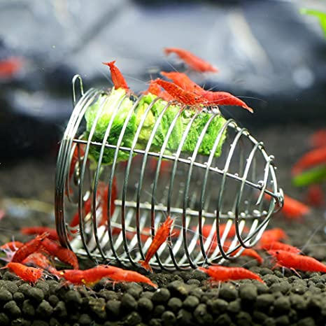 Amazon Com Yinrunx Stainless Steel Aquarium Crystal Shrimp Small