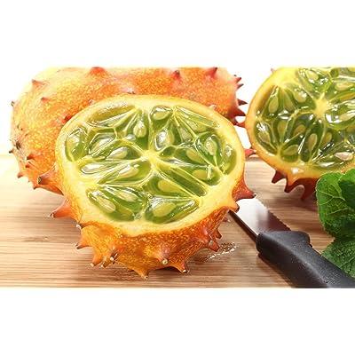 Kiwano Cucumis Metuliferus Horned Jelly Melon Melano Blowfish Fruit Seeds 25 PCS : Garden & Outdoor