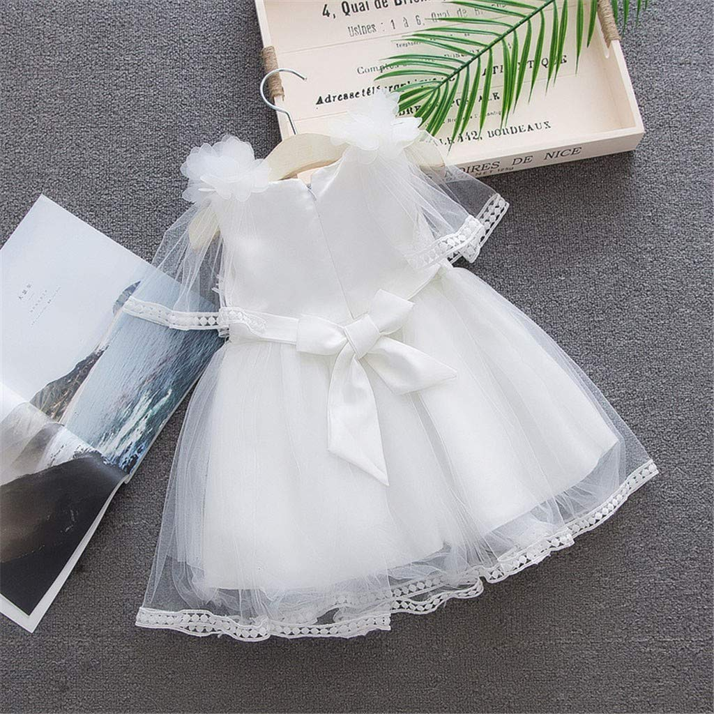 GorNorriss Baby Dress Toddler Girls Sleeveless Tulle Skirt Floral Party Princess Dresses