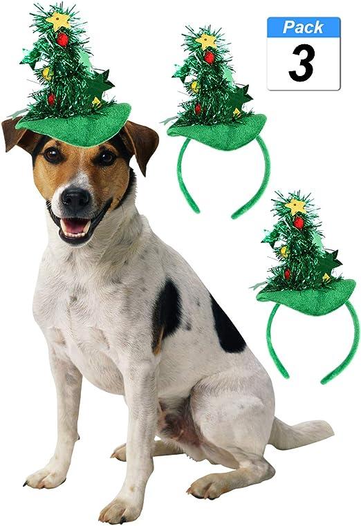 FishBabe - Divertido Sombrero de Halloween para Perro, Gatos ...