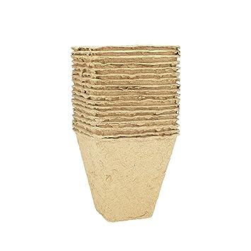 quantio Macetas rectangular Compostable - sin turba - Cada uno de aproximadamente 8 x 8 x 8 cm (LxBxH) - Cantidad a elegir: Amazon.es: Jardín