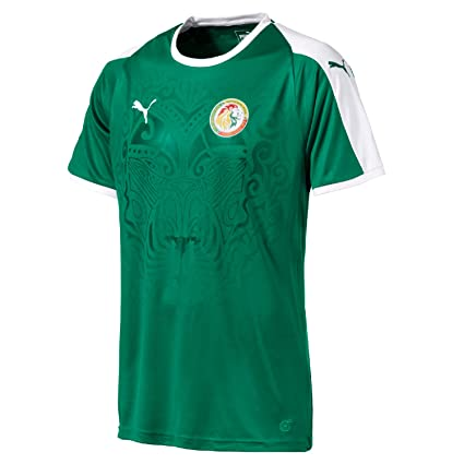 7f4eeda6894 Amazon.com   PUMA Senegal Away Jersey 2018 2019 - S   Sports   Outdoors