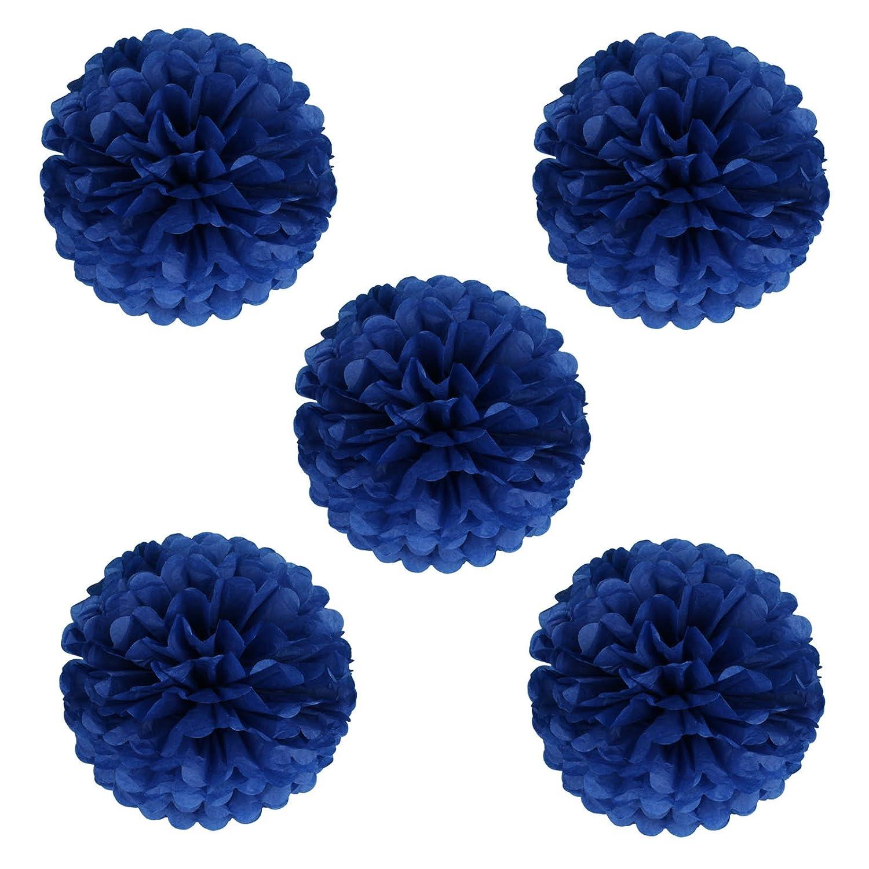 vlovelife 25,4/cm Papier de soie Pom Pompons en papier /à fleurs pour mariage f/ête danniversaire de douche de b/éb/é D/écorations Lot de 10