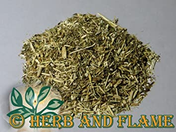 recipe: goldenrod tea amazon [17]