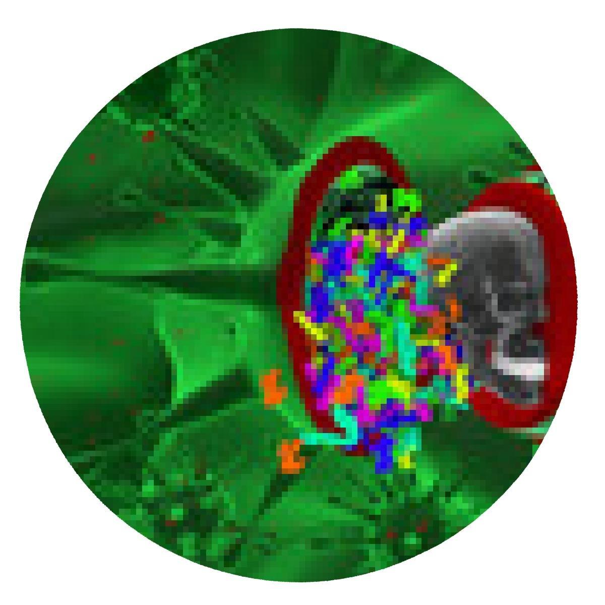 my-puzzle-design alfombrilla de ratón Dentro de un virus. La ...
