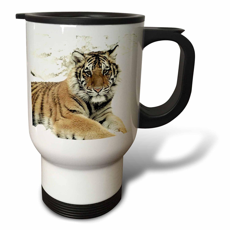 Buy 3drose Shikara Siberian Tiger Travel Mug 14 Ounce Online At Low Prices In India Amazon In