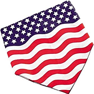 Carolina HAV, A, Hank Americana Bandannas, 22-Inch by 22-Inch, Stars and Stripes