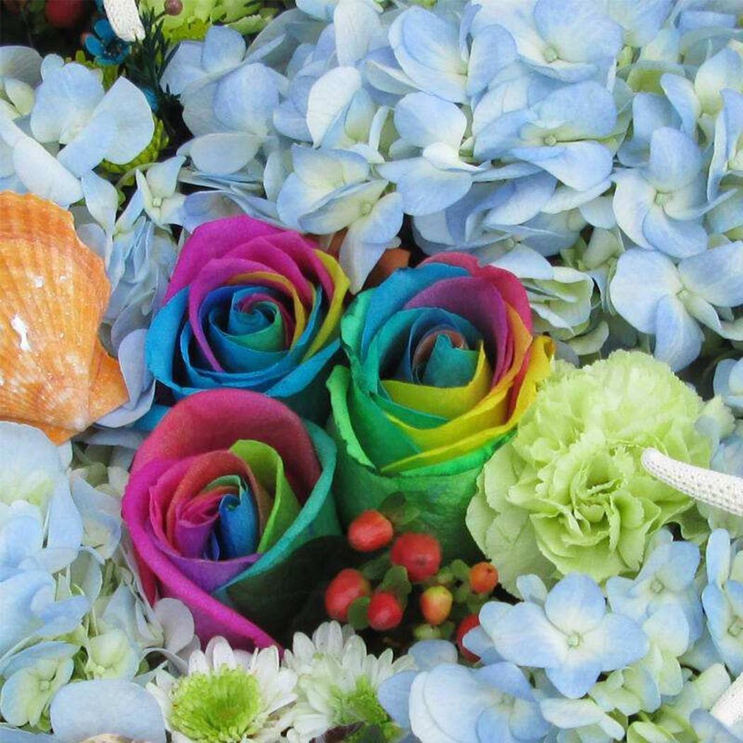 Goodfans Colorful Rainbow Rose Flower Seeds Petal Plants Home Garden Yard Decor (1 Bag/100 Pieces)