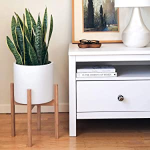 STNDRD. Bamboo Indoor Plant Stand - Mid-Century Modern. for Indoor Potted Plants. Fits 12-inch Round Planters (2-Pack)