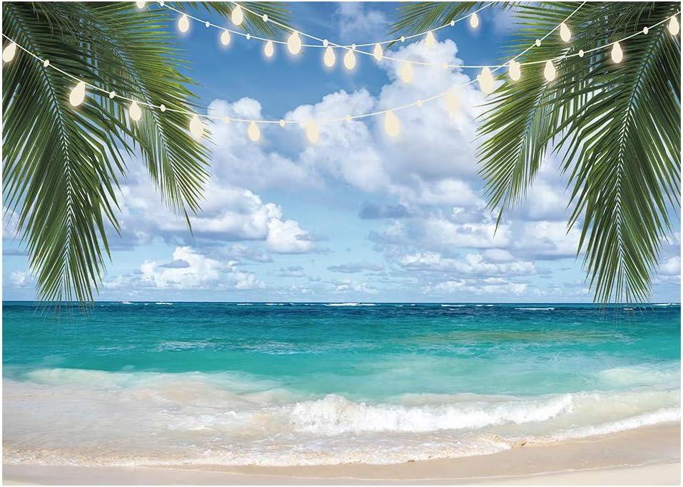Funnytree Fotografie Hintergrund Mit Tropischem Kamera
