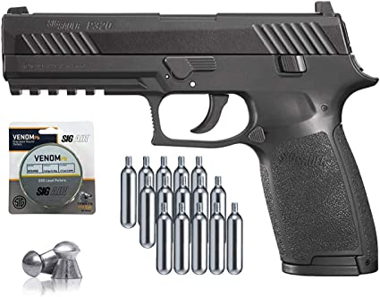 Amazon.com : SIG Sauer P320 Air Pistol with CO2 12 Gram (15 Pack) and 500  Lead Pellets Bundle (Black) : Sports & Outdoors
