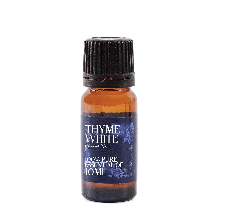 Mystic Moments Olio essenziale di timo - 10ml - puro al 100% EOThYME10