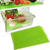 Dualplex Fruit & Veggie Life Extender Liner for Fridge Refrigerator Shelves, 15 x 24 Inches (2 Pack) – Extends The Life…