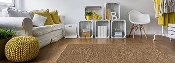 Amazon.com: Soft Shag Area Rug 5x7 Plain Solid Color BEIGE ...