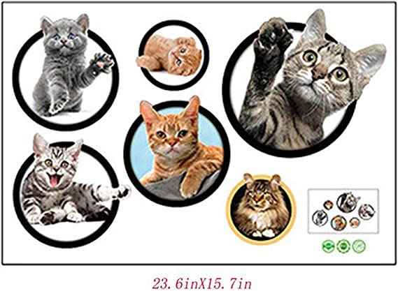 Dogs and Pets Wall Stickers Wall Art Animals Wall Decals Wall Decals Kids Stickers Siberian Cat Wall Sticker Decal