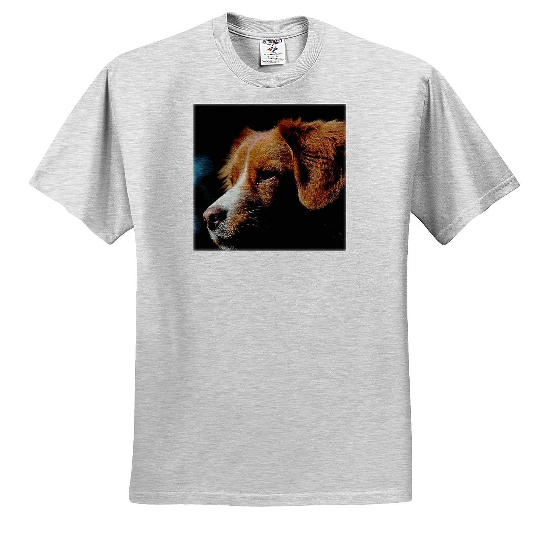 Portrait of Nova Scotia Duck Tolling Retriever 3dRose Sven Herkenrath Dog ts/_311455 Adult T-Shirt XL