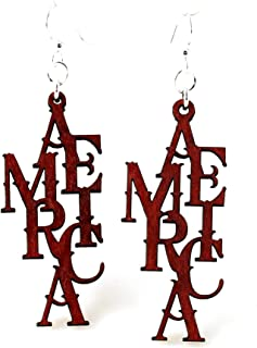product image for America Earrings